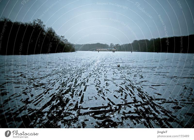 Haus am See Wasser Winter Ferne Wald kalt Schnee Erholung See Eis Spaziergang Café Mut Köln Erholungsgebiet Stadtwald
