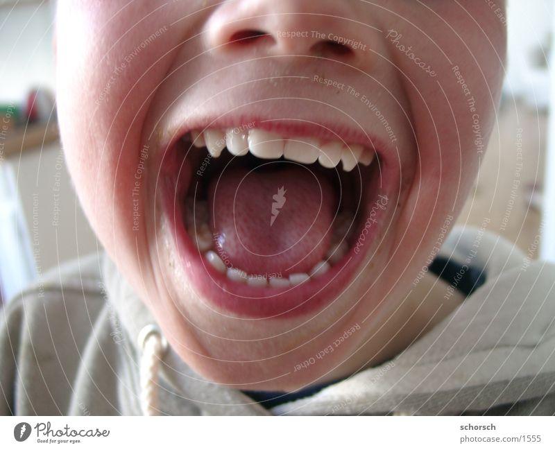 Schnauze!! Mensch Kind Gesicht Junge Mund Zähne Lippen Zunge