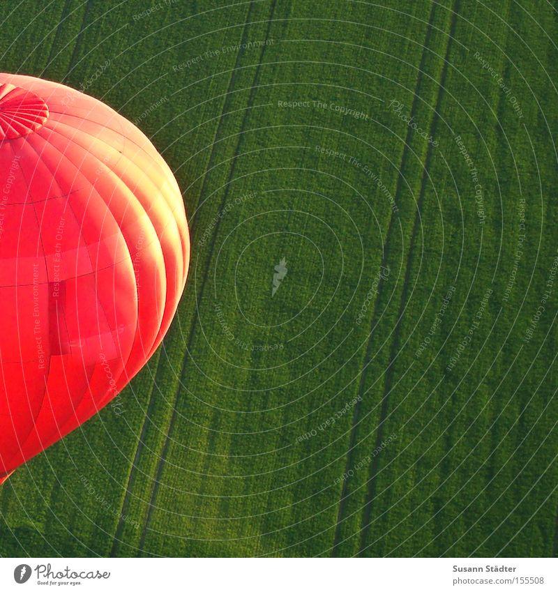 Roter Ballon Wiese grün Ballone fahren Wärme heizen Feld Dresden Spuren Korb Freiheit Vogel Luft Luftverkehr Traktorspur