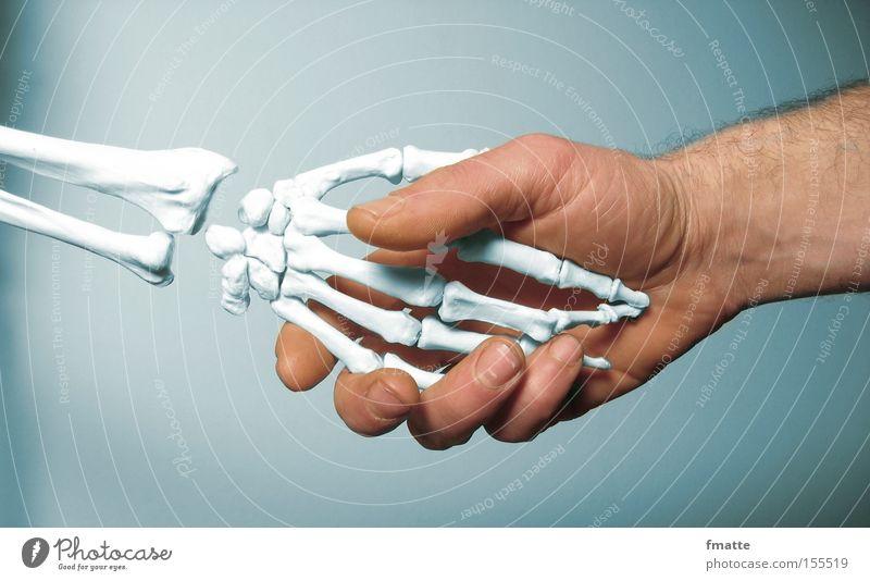 Hände Hand Skelett Vergänglichkeit Tod Gruß Hände schütteln Gevatter