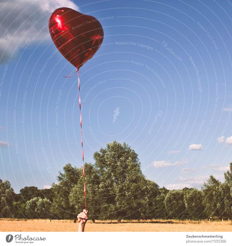 Luft & Liebe Flirten Valentinstag Hochzeit Geburtstag Hand Natur Sommer Schönes Wetter Luftballon Herz Gefühle Freude Fröhlichkeit Lebensfreude Sympathie