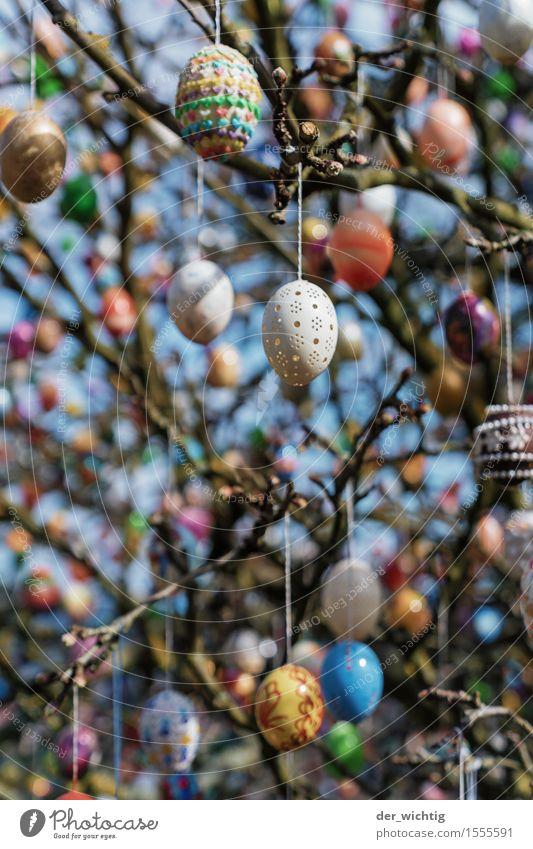 Viele Bunte Eier blau schön grün weiß rot gelb Kunst außergewöhnlich Feste & Feiern rosa orange glänzend Dekoration & Verzierung gold ästhetisch verrückt