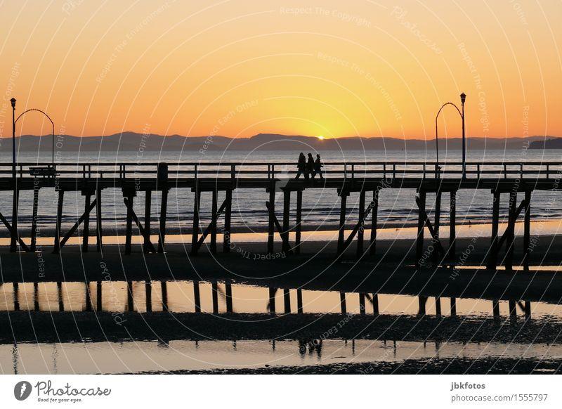 Sonntagsspaziergang auf dem Stelzenweg Umwelt Natur Urelemente Wasser Himmel Wolkenloser Himmel Sonnenaufgang Sonnenuntergang Schönes Wetter Hügel Wellen Küste