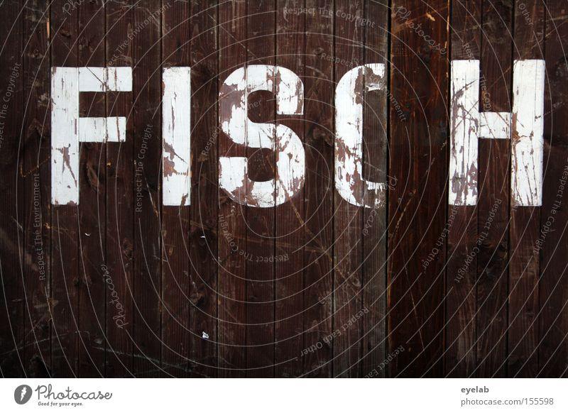 FISCH am Montag Wand Holz Gebäude Fisch Schriftzeichen Buchstaben Hütte Typographie Wort Holzwand Kratzer Schliere zerkratzen
