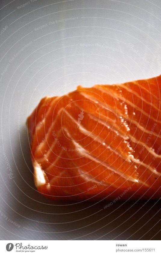 frischerfisch Farbfoto Strukturen & Formen Fisch Ernährung Gastronomie Lachs Mahlzeit Schweinefilet orange Zutaten Protein Feinschmecker