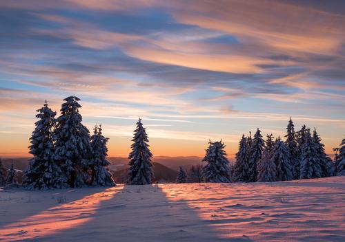 Split Sunset Himmel Natur schön Baum Sonne Erholung Landschaft rot Wolken Winter Wald Berge u. Gebirge Schnee Deutschland rosa Romantik