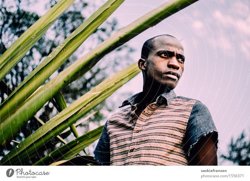 What do you see? Mensch maskulin Junger Mann Jugendliche 1 Natur Mode Bekleidung exotisch Identität einzigartig modern träumen Vergänglichkeit