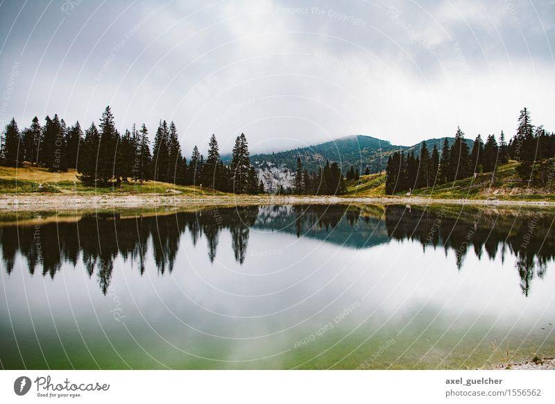 Dark Mountain Pond Umwelt Natur Landschaft Wasser Himmel Wolken schlechtes Wetter Baum Wald Hügel Berge u. Gebirge Gipfel Teich Stimmung Idylle Farbfoto