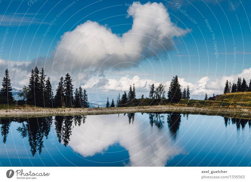 So Blue Himmel Natur Sommer Wasser Baum Landschaft Erholung Wolken Freude Leben Glück See Stimmung Zufriedenheit Kraft Schönes Wetter
