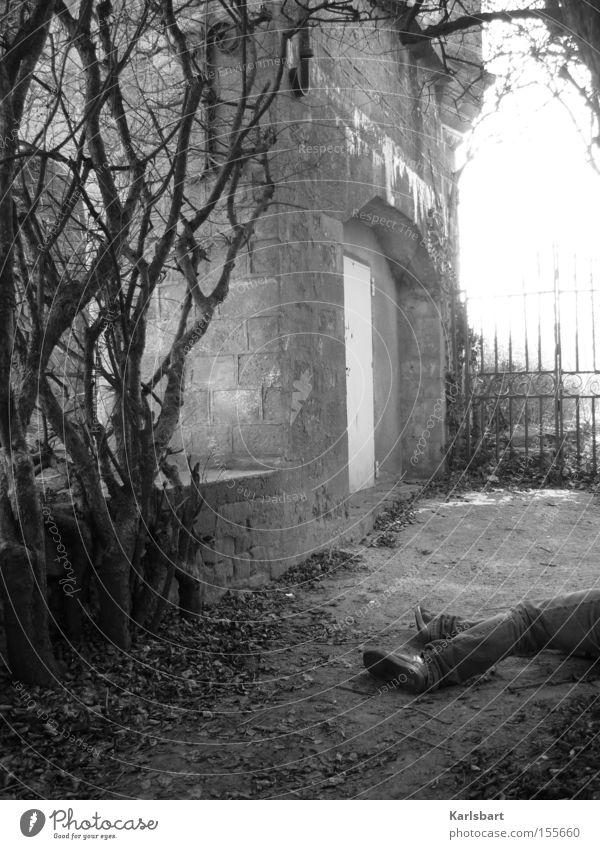 fin de siècle. Mann Erwachsene Beine Natur Sträucher Garten Park Altstadt Ruine Architektur Mauer Wand liegen ästhetisch authentisch dunkel gruselig kalt Tod
