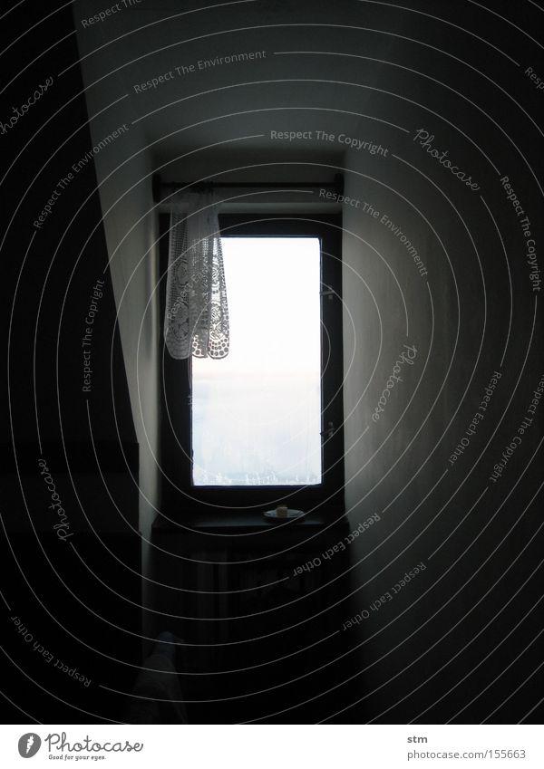 auf der anderen seite Fenster Blick Gardine Nische Ferne Licht Winter Ferien & Urlaub & Reisen Aussicht Raum window room