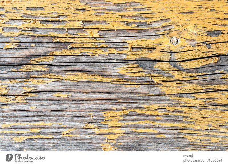 Zu spät Farbstoff gelb Maserung Hintergrundbild Holz alt hässlich Wandel & Veränderung Riss abgelebt Patina Astloch abgewittert Verfall Farbfoto Gedeckte Farben