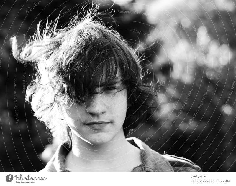 Freiheitsgefühl Jugendliche weiß Sommer Gesicht schwarz Haare & Frisuren Wind wild stark Locken Sommersprossen