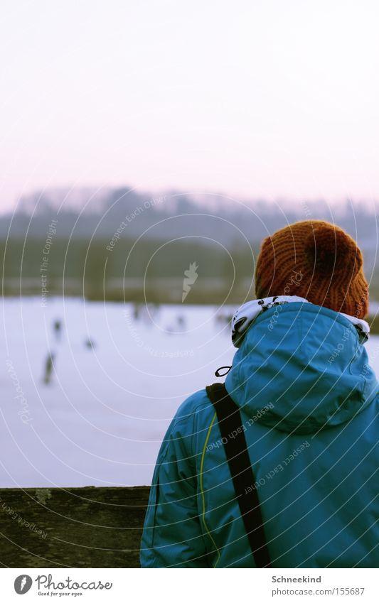 Kalte Zeiten Mensch Winter kalt Schnee Spielen See Eis Rücken Spaziergang Vergänglichkeit Aussicht gefroren Mütze Schlittschuhlaufen Neid