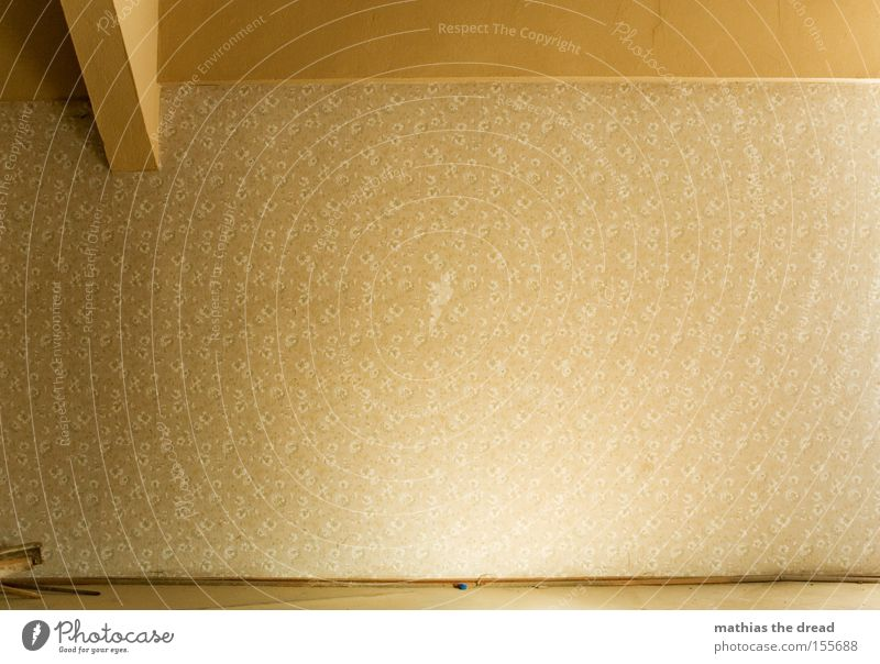 AUFHÄNGFLÄCHE ZU VERMIETEN Wand Tapete Blume Osten alt schäbig vergilbt Balken Dachgebälk Träger Raum Menschenleer Einsamkeit Sonnenlicht Design schön verfallen