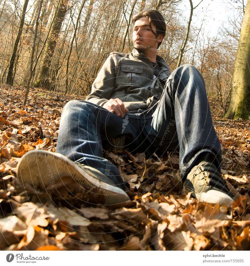 relax! Natur Jugendliche Baum Blatt Wald Erholung Herbst Mann Freiheit Schuhe braun maskulin frei sitzen Jeanshose genießen