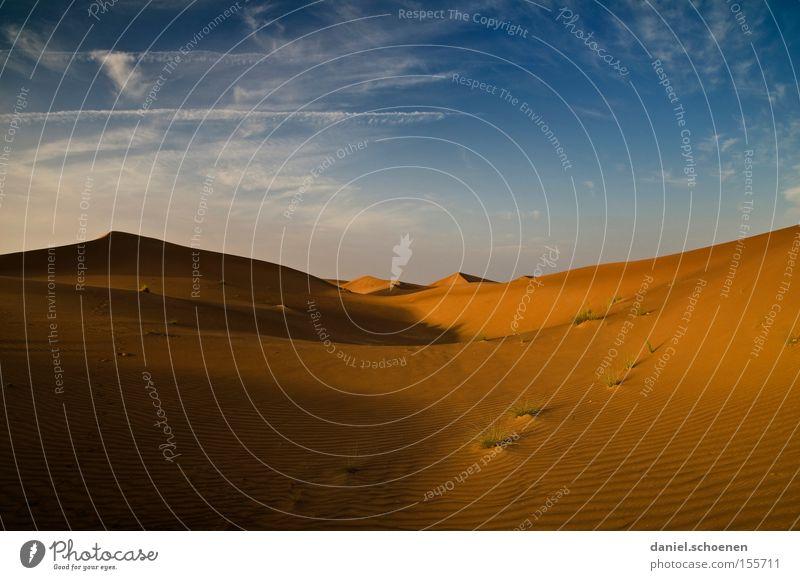 Snowboard Wüste Sand Düne rot gelb blau Himmel trocken Wärme Wind Umwelt Klima Ferien & Urlaub & Reisen Naher und Mittlerer Osten Expedition Erde Winter