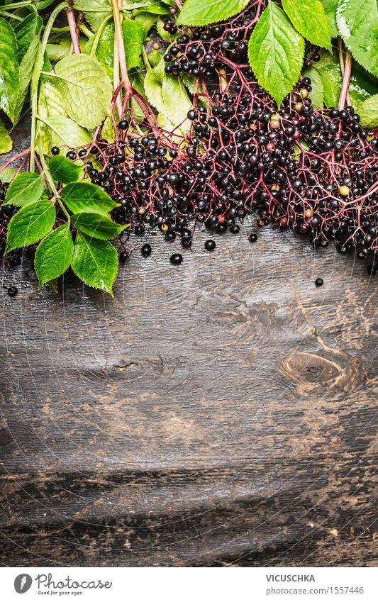 Reife Holunderbeeren auf Zweige mit Blättern Natur Pflanze Sommer Gesunde Ernährung Blatt Leben Essen Foodfotografie Stil Garten Lebensmittel Design Frucht Textfreiraum Ernährung Tisch