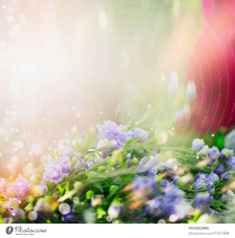 Natur Hintergrund mit kleinen blauen Blüten Sommer Landschaft Pflanze Sonnenlicht Frühling Schönes Wetter Blume Gras Blatt Garten Park Wiese Blumenstrauß
