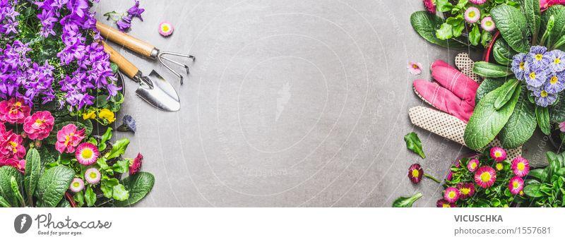 Garten Geräte mit Sommerblumen Natur Pflanze Blume Blatt gelb Blüte Frühling Herbst Stil rosa Design Dekoration & Verzierung Tisch Fahne