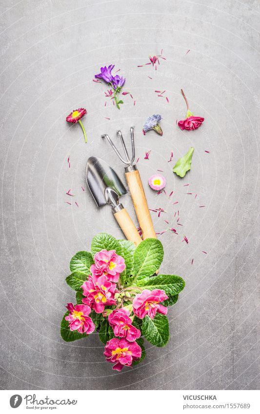 Gartengeräte mit Blumen Stil Freizeit & Hobby Sommer Wohnung Dekoration & Verzierung Tisch Natur Pflanze Frühling Herbst Blatt Blüte Blühend rosa Design