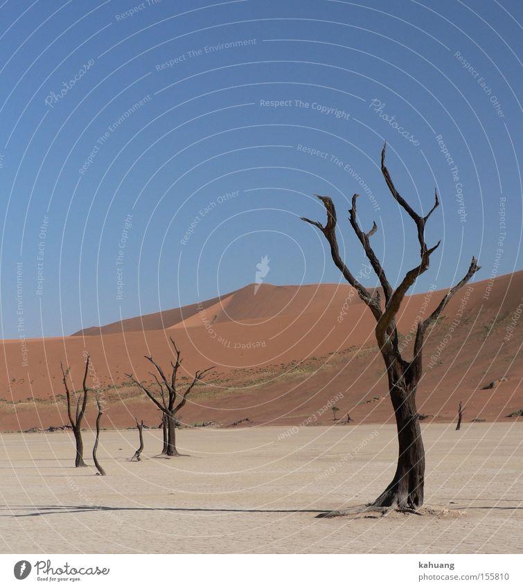Afrika Wüste Düne wüst Namibia Sossusvlei Dead Vlei