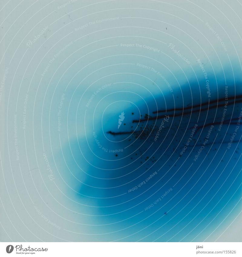 blaues Blut Verlauf Wasser Kunst Experiment Lomografie Holga Mittelformat fließen Farbe Fleck Wassertropfen Chemie Moderne Kunst Schmiererei