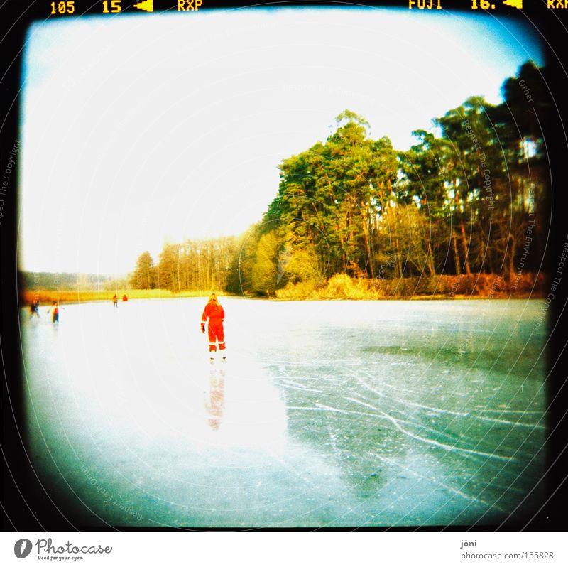 Der rote Punkt Baum Sonne Winter Freude Wald Spielen See Eis Freizeit & Hobby Spuren Schönes Wetter Teich Glätte Wintersport Licht Schlittschuhe