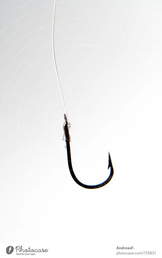 Haken Angelköder Köder ködern Hinterhalt Falle fangen Angeln Fischereiwirtschaft Spitze Widerhaken Angelschnur Angler Freizeit & Hobby Erfolg