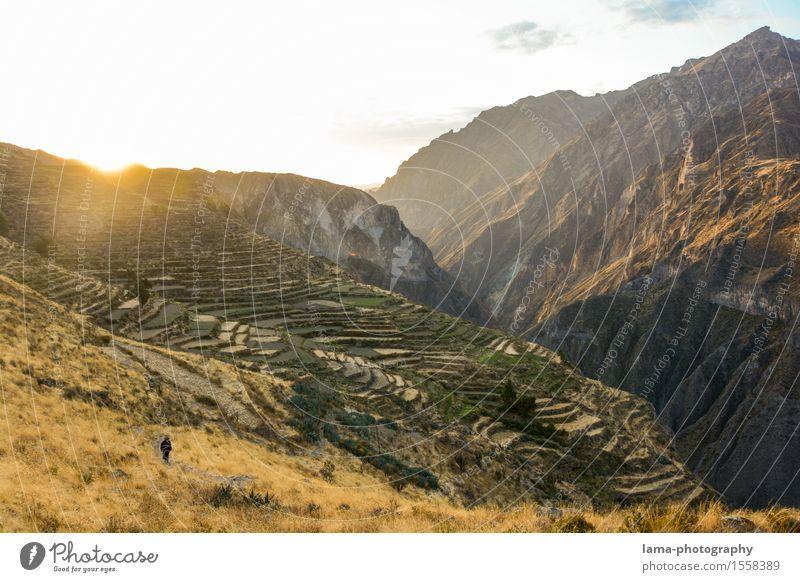 Colca Canyon Ausflug Abenteuer Expedition Camping Berge u. Gebirge wandern Natur Landschaft Sonnenaufgang Sonnenuntergang Schlucht Arequipa Peru Südamerika