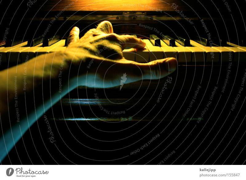 ein klavier, ein klavier Hand Finger Klavier Flügel Musik Schulunterricht Bildung Klassik Rockmusik Musiknoten Notenblatt Composing Geschicklichkeit Licht