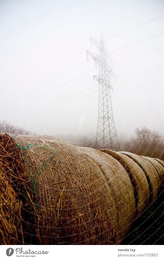 Geballt Umwelt Energie Industrie Elektrizität Klima Landwirtschaft Amerika Strommast ökologisch Bioprodukte Biologische Landwirtschaft Stroh Vorrat biologisch Strohballen