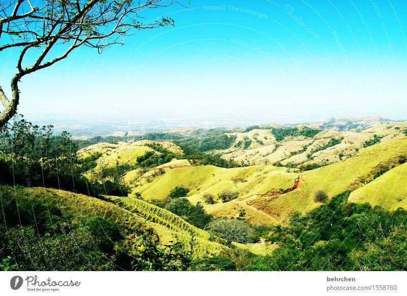 genießen | die ferne Himmel Natur Ferien & Urlaub & Reisen schön Baum Landschaft Ferne Wald Berge u. Gebirge Wärme außergewöhnlich Freiheit Tourismus träumen