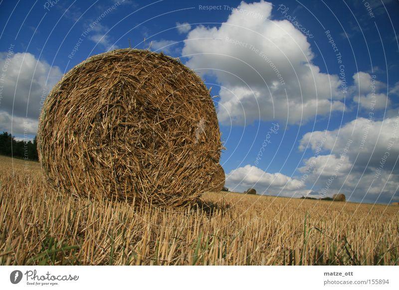Strohballen Herbst Himmel Wolken Sommer Natur Heu August Oberfranken Bayern Feld Landwirtschaft Ackerbau Getreide
