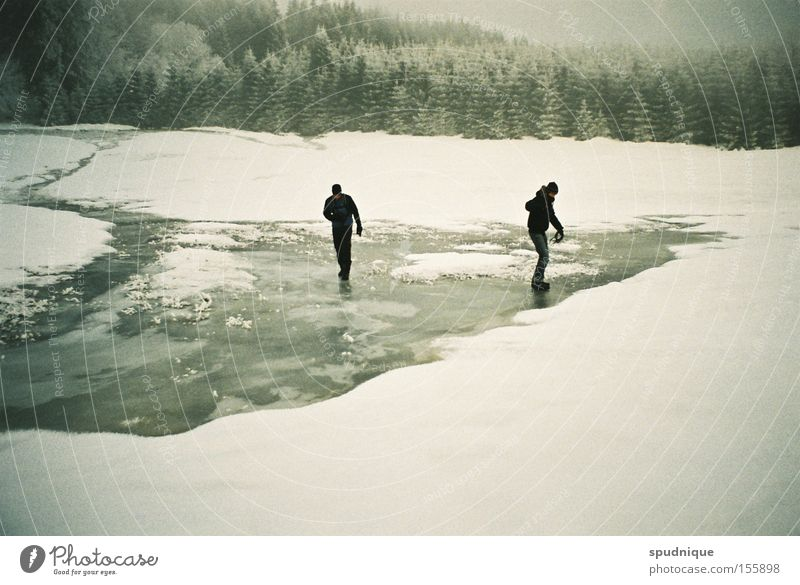 on a frozen day in summer Schnee Eis gefroren frieren Wasser Wiese Wald Waldlichtung wandern Winter Winterwald brechen rutschen gleiten weiß ruhig