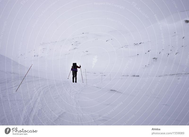 Einmal Arktis Mensch Natur Landschaft Einsamkeit Wolken Ferne Winter Berge u. Gebirge Schnee Nebel Eis Zukunft Abenteuer Frost Skifahren Vertrauen
