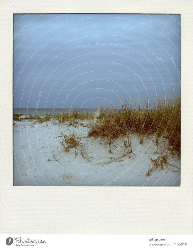 dune du pola Himmel Meer Strand Ferien & Urlaub & Reisen ruhig Erholung Sand Küste Horizont Erde Polaroid Stranddüne Ostsee Darß Prerow