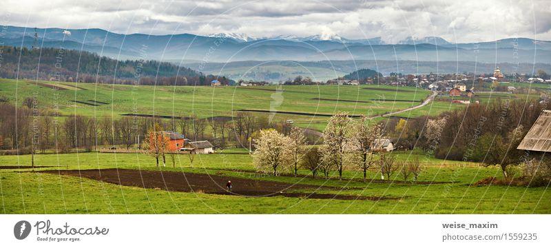 Blühende Berge der Bäume im Frühjahr. Schnee und grüne Felder Himmel Natur Ferien & Urlaub & Reisen Pflanze Baum Landschaft Wolken Haus Wald Berge u. Gebirge