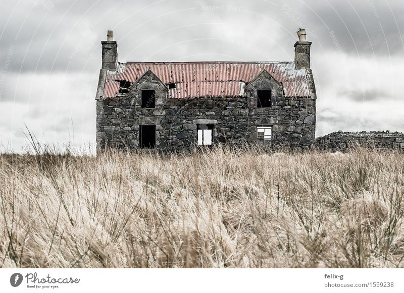 Creepy Landschaft Wolken Herbst schlechtes Wetter Wind Gras Wiese Haus Hütte Ruine Baracke Fassade Schornstein Stein alt Traurigkeit gruselig grau Angst Senior