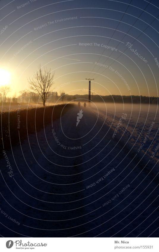winterwanderung Sonnenuntergang Dämmerung Nebel Wintertag Jahreszeiten Spaziergang Landschaft Himmel wandern 2 Himmelskörper & Weltall Kabel Paar