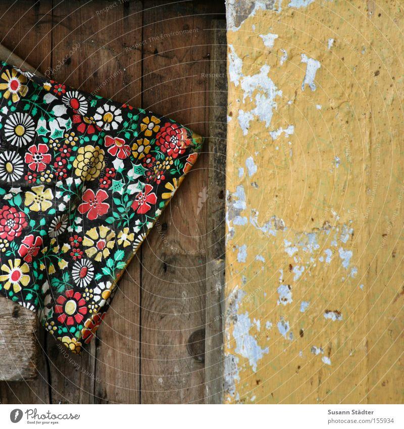 Verfall mit Stil und Blümchen Blume Tapete Haus Tür alt Altbau Wand orange tapezieren Beton Holz Maserung Stein Dresden verfallen Einsamkeit