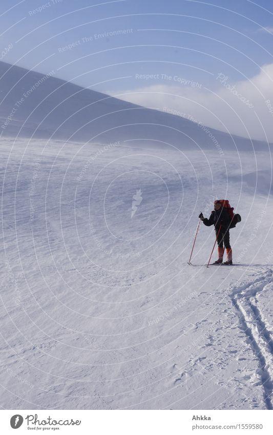 von dannen Mensch blau Landschaft Einsamkeit ruhig Wege & Pfade Schnee Freiheit Raum Eis Kraft Kreativität leer Abenteuer Frost entdecken