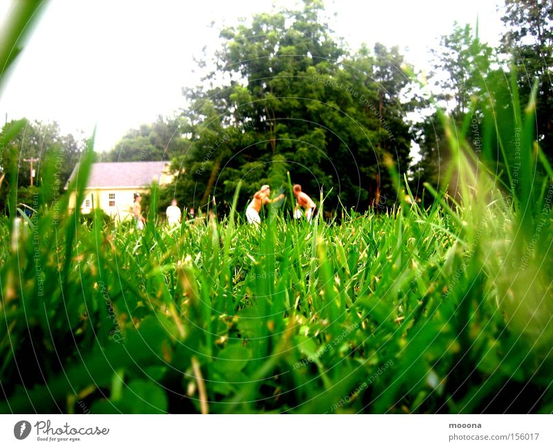 Grashüpfer Mann Natur grün Freude Wiese Spielen Freiheit Freizeit & Hobby verstecken kämpfen Klee Wildnis Heuschrecke Steppengrashüpfer