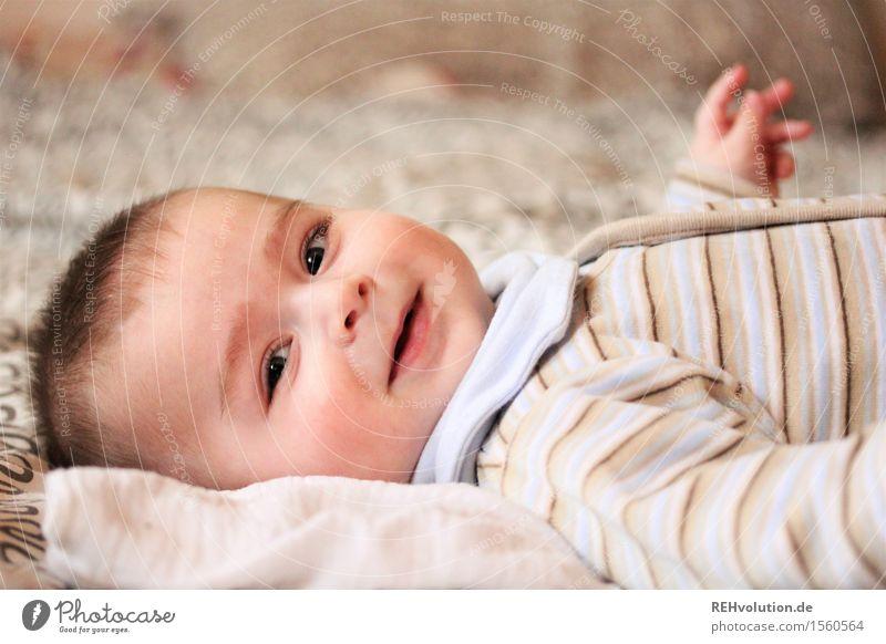 unwiderstehliches lächeln Mensch Kind Freude Gefühle Familie & Verwandtschaft Glück klein maskulin Zufriedenheit liegen Kindheit Fröhlichkeit Lächeln Baby Lebensfreude niedlich