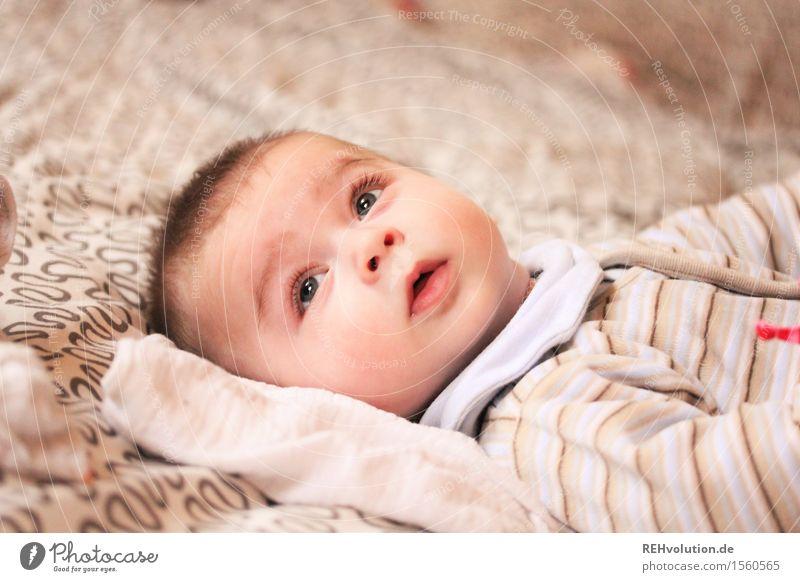 Nur der Augenblick zählt baby... Mensch maskulin Baby 1 0-12 Monate liegen braun Lebensfreude Vertrauen Geborgenheit entdecken Neugier Jugendliche klein schön