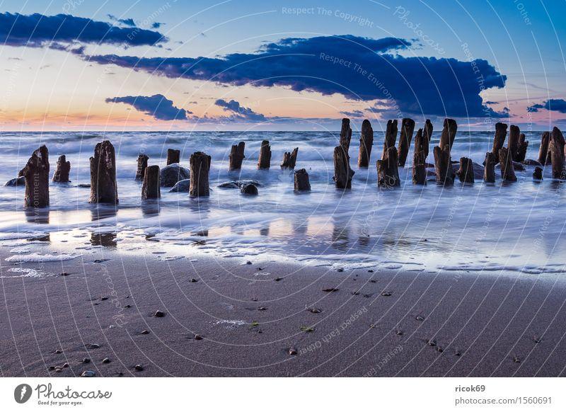 Buhne an der Küste der Ostsee Erholung Ferien & Urlaub & Reisen Tourismus Sonne Strand Meer Natur Landschaft Wasser Wolken alt Romantik Idylle Himmel