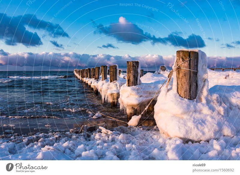 Buhne an der Ostseeküste bei Zingst Erholung Ferien & Urlaub & Reisen Tourismus Strand Meer Winter Natur Landschaft Wasser Wolken Küste Holz kalt Romantik