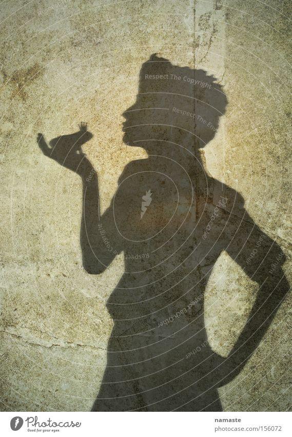 die immer gleiche geschichte... Frosch Froschkönig Märchen Prinzessin Frau Erzählung Schatten Schattenspiel Mauer Strukturen & Formen Liebe Wunsch träumen