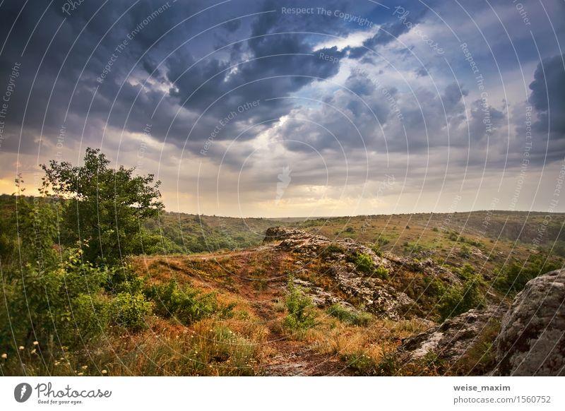 Regen und Sturmhimmel. Frühlingswolken und Regen Himmel Natur schön grün Baum Landschaft Wolken dunkel Wiese Gras Wetter offen Sträucher Aussicht