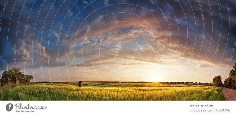 Getreidefelder des Sonnenuntergangpanoramas im Frühjahr mit Fotografen Himmel Natur Ferien & Urlaub & Reisen blau schön grün Sommer Baum Landschaft Wolken